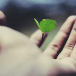 Debunking Life Insurance Myths