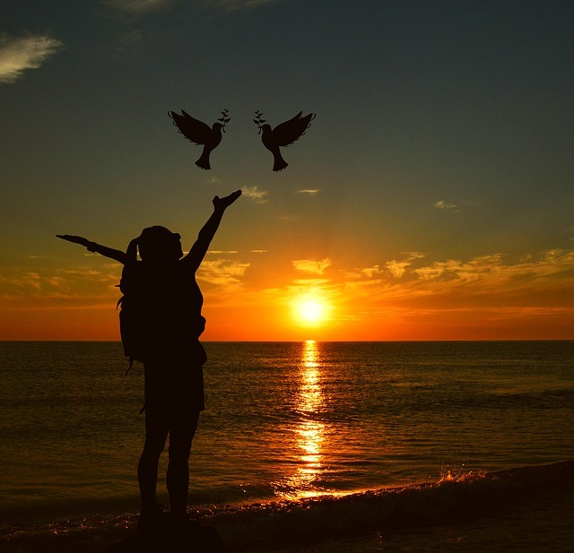 sunset, sun, dusk