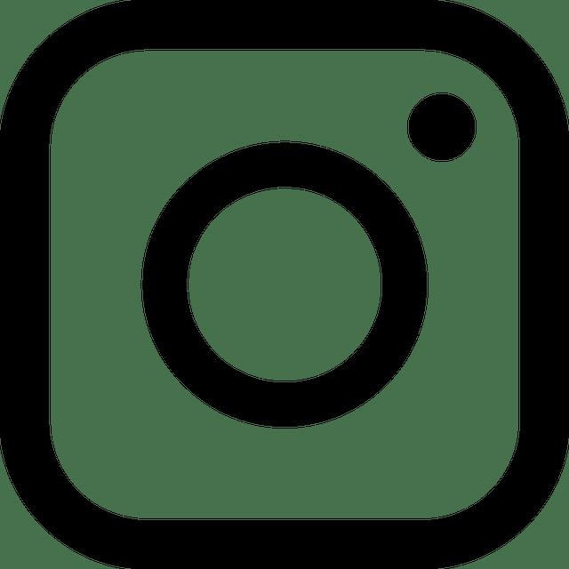 icon, essential, instagram